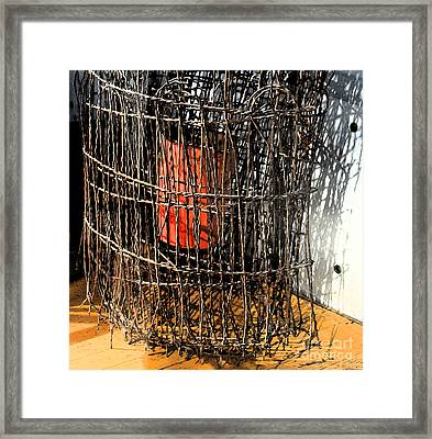 Orange In Wire Framed Print by Gary Everson