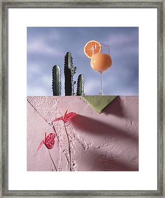Orange Juice Framed Print by Steven Huszar