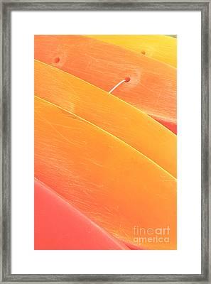Orange Kayaks Framed Print by Brandon Tabiolo - Printscapes