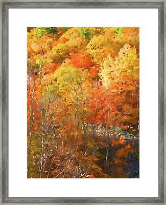 Orange Leaves Framed Print