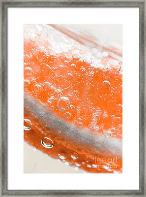 Orange Martini Cocktail Framed Print