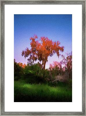 Orange Oak Framed Print