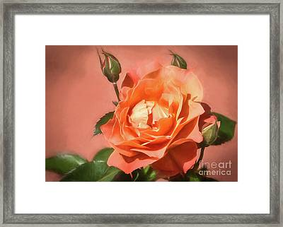 Orange Poetry Framed Print by Janice Rae Pariza