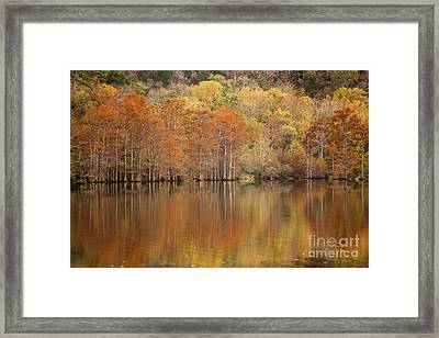 Framed Print featuring the photograph Orange Pool by Iris Greenwell