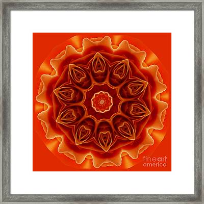 Orange Rose Mandala Framed Print