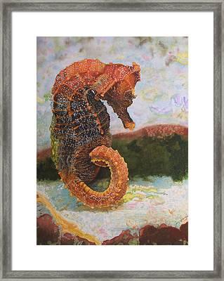 Orange Sea Horse At Rest. Framed Print by Jan  Spangler
