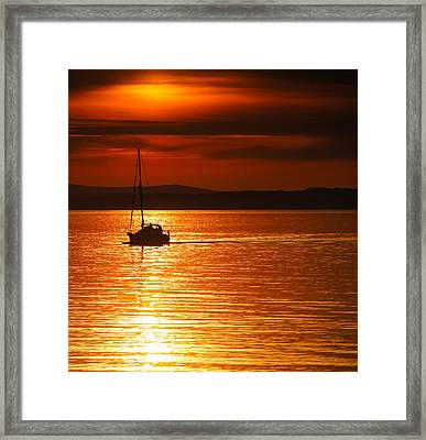 Orange Silhouette Framed Print by Nik Watt