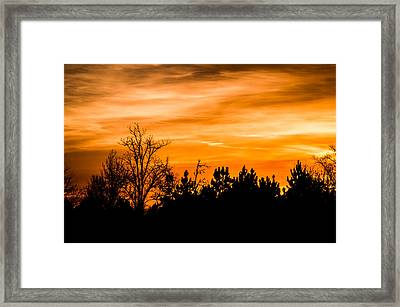 Orange Silhouettes Framed Print by Shelby Young