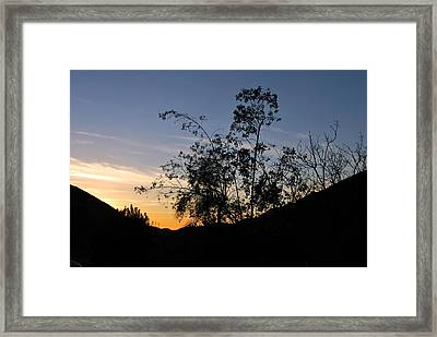 Framed Print featuring the photograph Orange Sky Nature Silhouette by Matt Harang