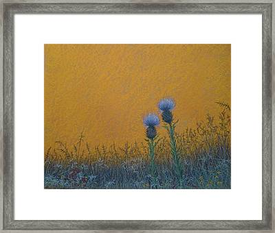 Orange Sky With Thistle Framed Print