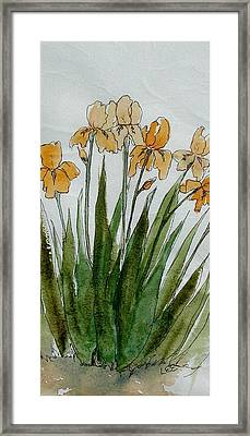 Orange Sprng Framed Print