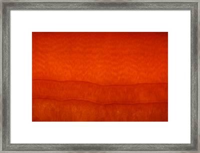 Orange Stone 3 Framed Print