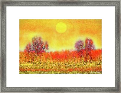 Orange Sunset Shimmer - Field In Boulder County Colorado Framed Print