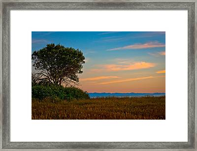 Orange Sunset With Tree Framed Print