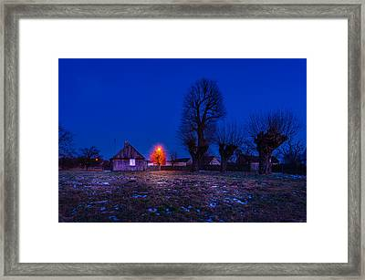 Framed Print featuring the photograph Orange Tree by Dmytro Korol