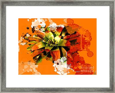 Orange Tropic Framed Print