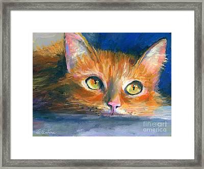 Orange Tubby Cat Painting Framed Print by Svetlana Novikova