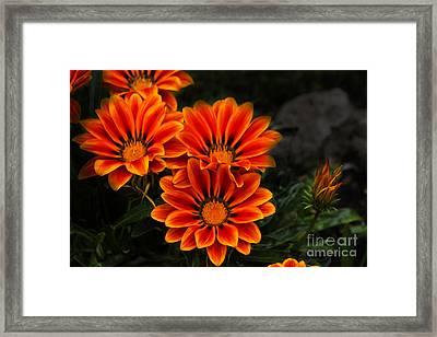 Orange You Glad II Framed Print by Al Bourassa