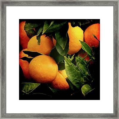 Oranges Framed Print by Ernie Echols