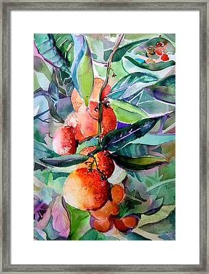 Oranges Framed Print by Mindy Newman