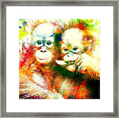 Orangutan Framed Print by Stacey Chiew