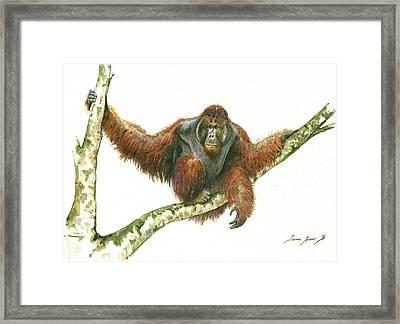 Orangutang Framed Print by Juan Bosco