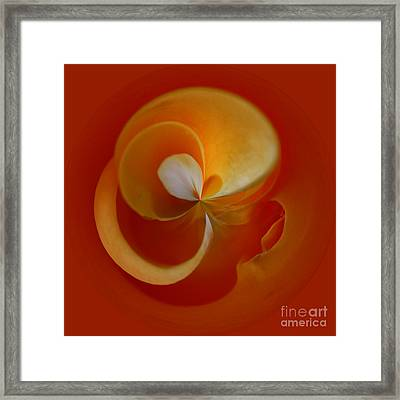 Orb 3 Framed Print by Elena Nosyreva