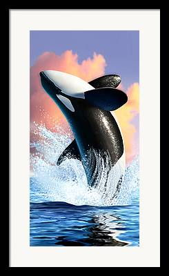 Orca Digital Art Framed Prints