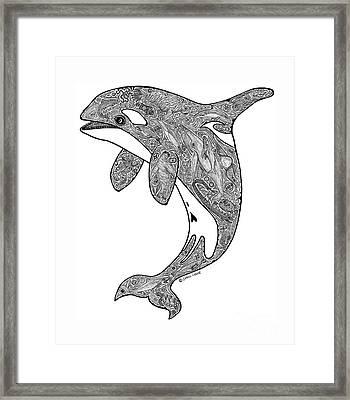 Orca Framed Print by Carol Lynne