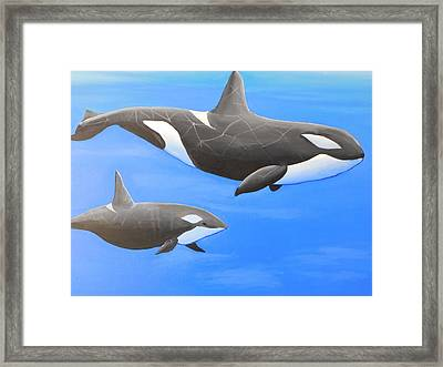 Orca With Baby Framed Print