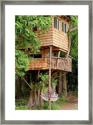 Orcas Island Treehouse Framed Print by Art Block Collections