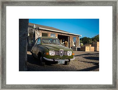 Orchard Life Framed Print