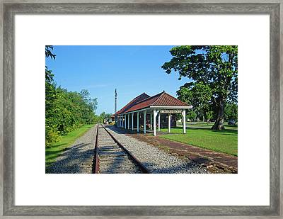 Orchard Park 1004 Framed Print by Guy Whiteley