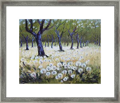 Orchard With Dandelions Framed Print