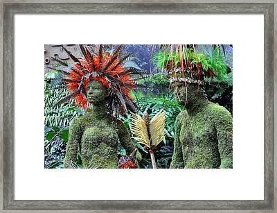 Orchid 32 Framed Print by Marty Koch