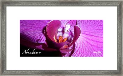 Orchid Abundance Framed Print