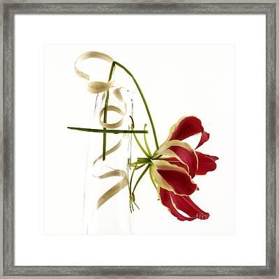 Orchid Framed Print by Bernard Jaubert