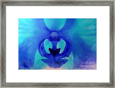 Orchid Blessing Framed Print by Krissy Katsimbras