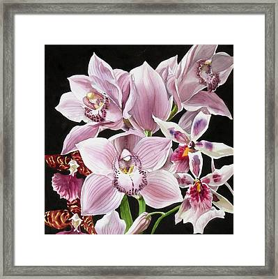 Orchid Bouquet Framed Print