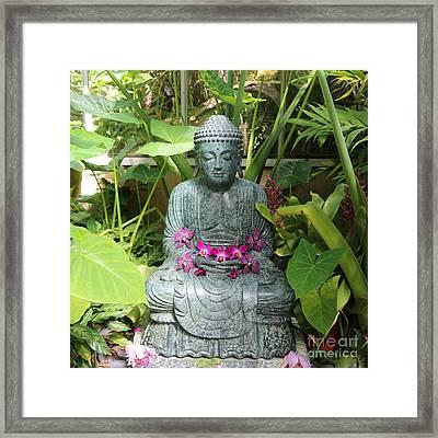 Orchid Buddha Framed Print by Carol Groenen