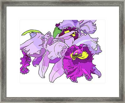 Orchid Cluster Framed Print by Jamie Downs