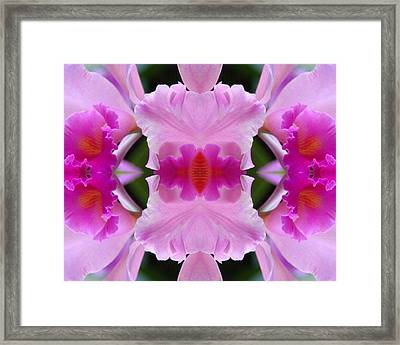 Orchid Fusion Framed Print
