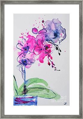 Orchid Improvisation Framed Print by Zaira Dzhaubaeva