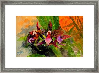 Orchid Framed Print by Jason Sentuf