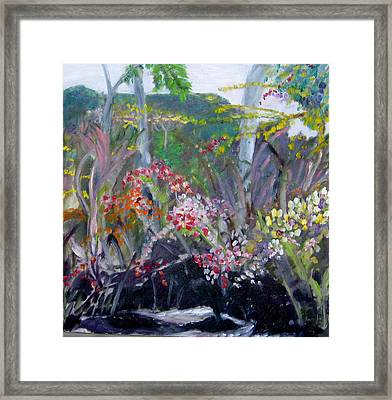 Orchid Jungle Framed Print