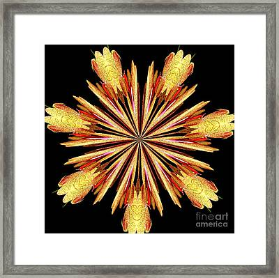 Orchid Kaleidoscope 10 Framed Print