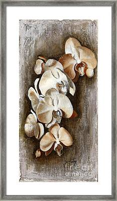 Orchid Ladder Framed Print by Daniela Easter