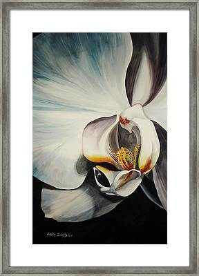 Orchid Framed Print by Lelia DeMello