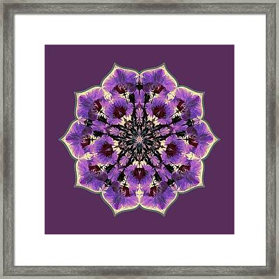 Orchid Lotus Framed Print