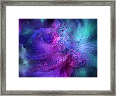 Orchid Moods 3 Framed Print